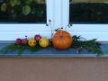 Podzim na Domově mládeže