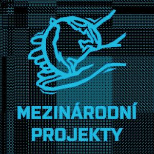 Mezinárodní projekty